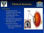 clinical anatomy9