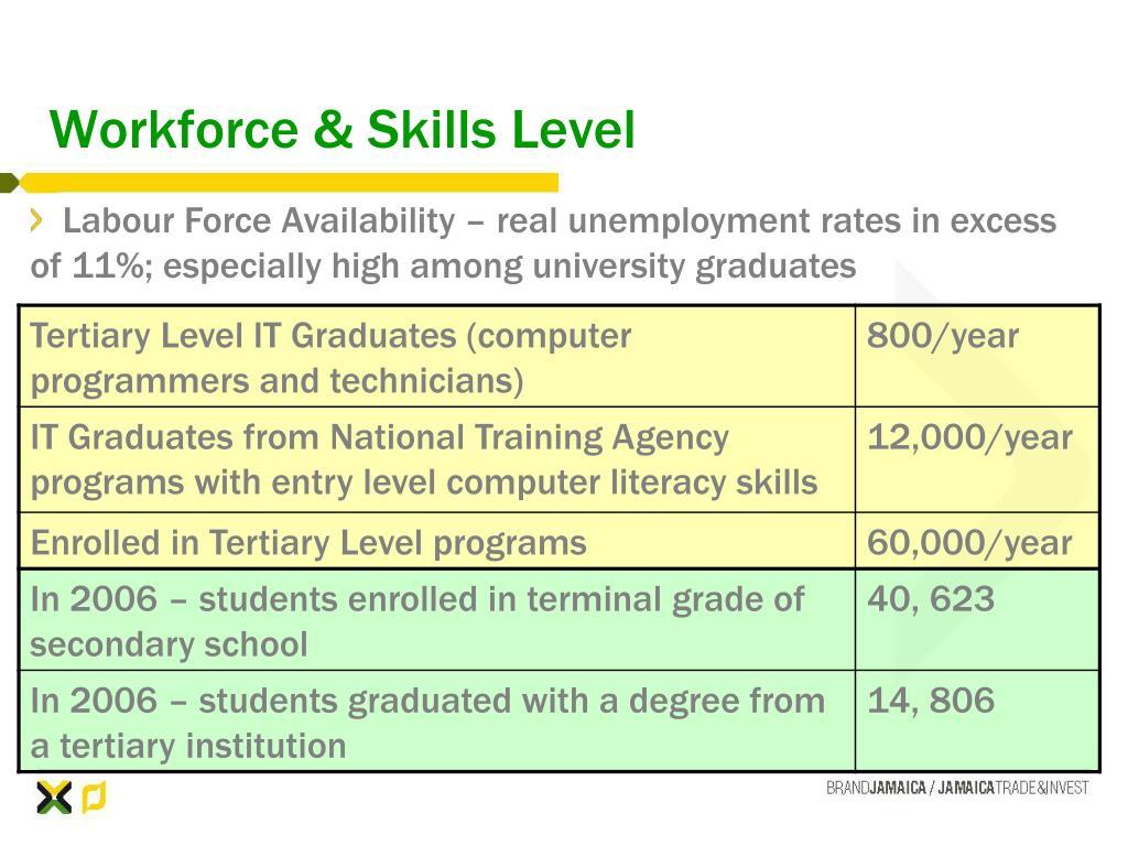 Workforce & Skills Level