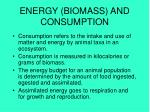 energy biomass and consumption