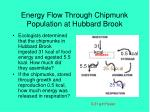energy flow through chipmunk population at hubbard brook19