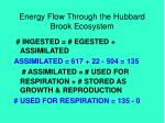 energy flow through the hubbard brook ecosystem31