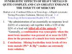 synergistic effects of heavy metals is quite complex and can greatly enhance the toxicty of mercury