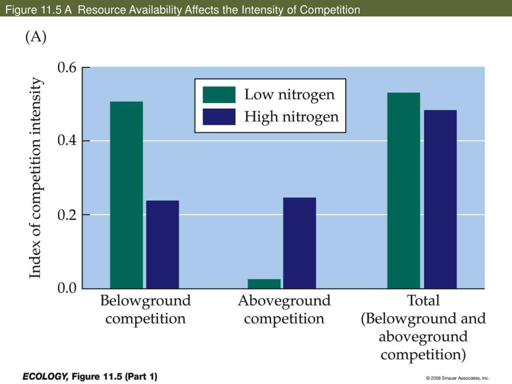 Figure 11.5 A  Resource Availability Affects the Intensity of Competition