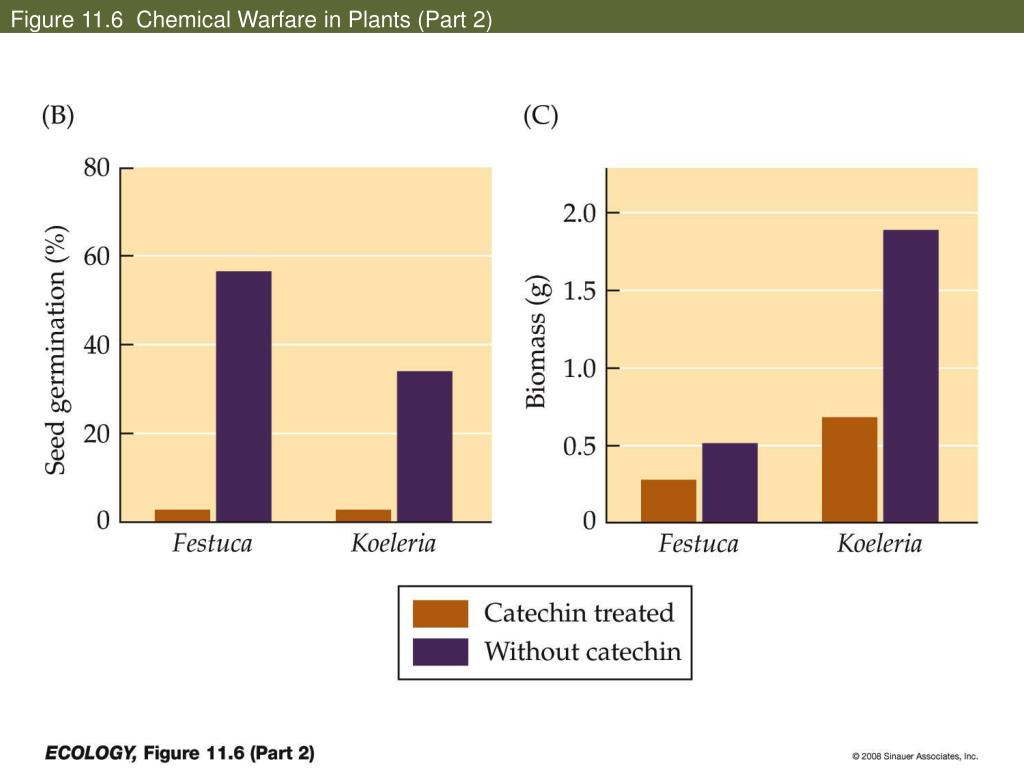 Figure 11.6  Chemical Warfare in Plants (Part 2)