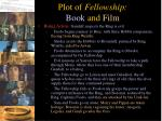 plot of fellowship book and film3