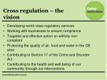 cross regulation the vision