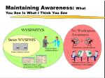 maintaining awareness what you see is what i think you see