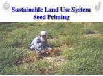 sustainable land use system seed priming