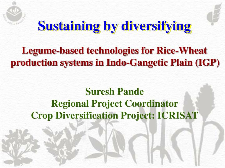sustaining by diversifying n.