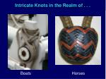 intricate knots in the realm of