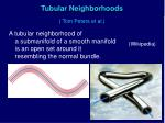 tubular neighborhoods