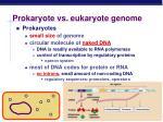 prokaryote vs eukaryote genome