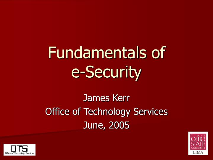 fundamentals of e security n.