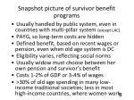snapshot picture of survivor benefit programs