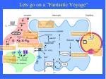 lets go on a fantastic voyage