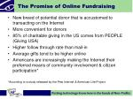 the promise of online fundraising