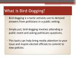 what is bird dogging