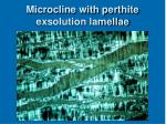 microcline with perthite exsolution lamellae