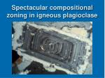 spectacular compositional zoning in igneous plagioclase