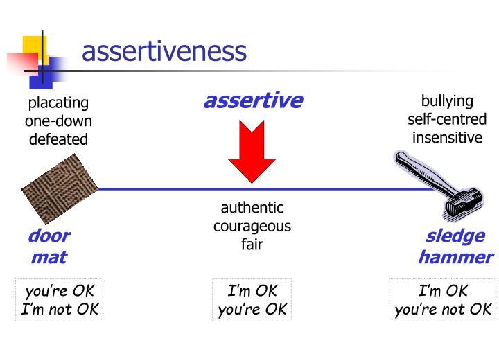 assertiveness n.
