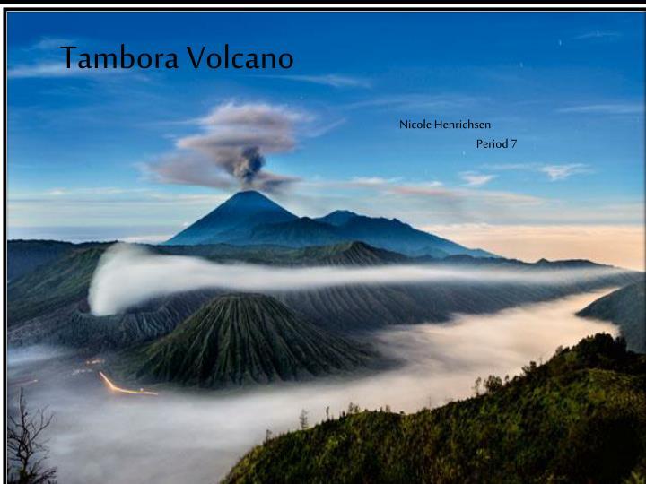 mt tambora volcanoes