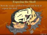 exposing the skull