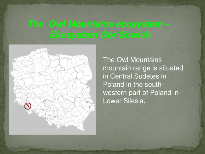 The  Owl Mountains ecosystem –