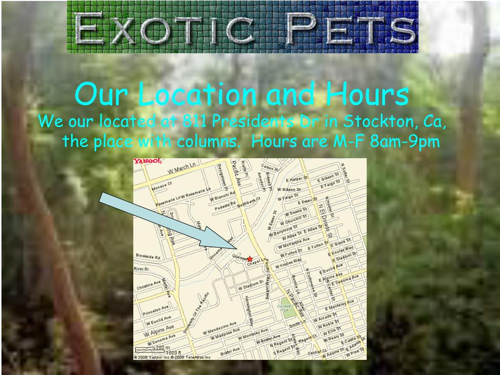 Our Location and Hours