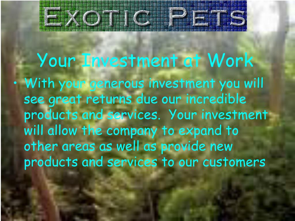 Your Investment at Work