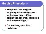 guiding principles8