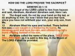 how did the lord provide the sacrifice