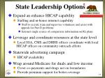 state leadership options