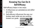 knowing you can do it self efficacy2