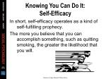 knowing you can do it self efficacy3
