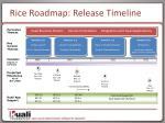 rice roadmap release timeline