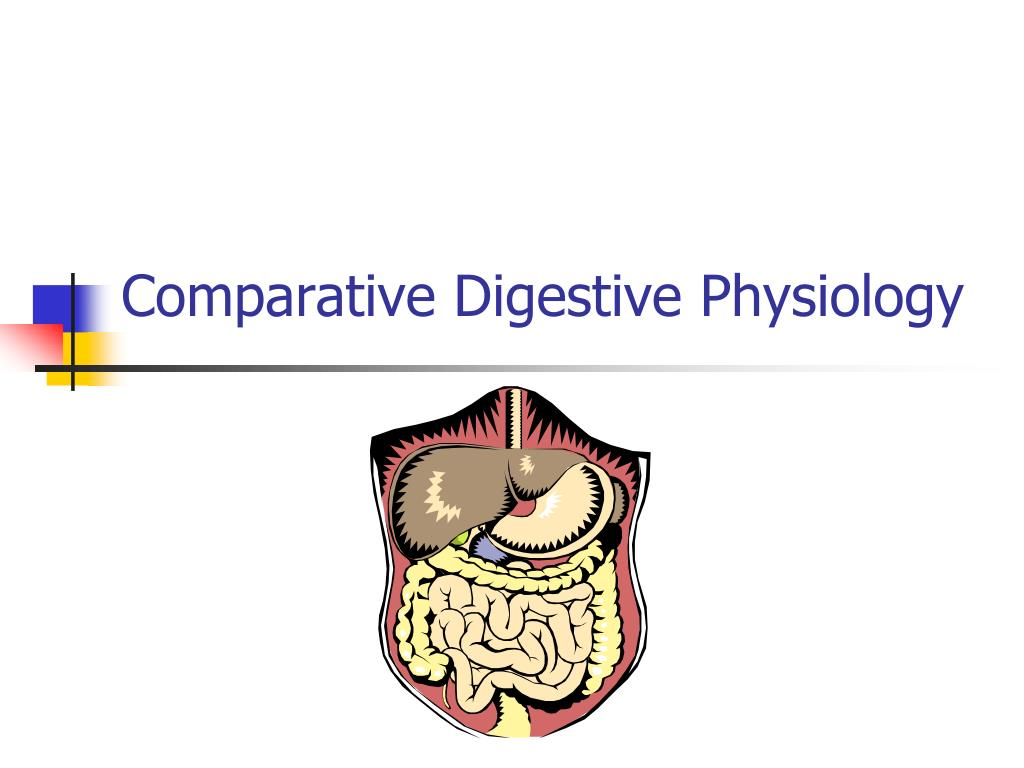 comparative digestive physiology l.