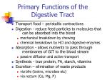 primary functions of the digestive tract
