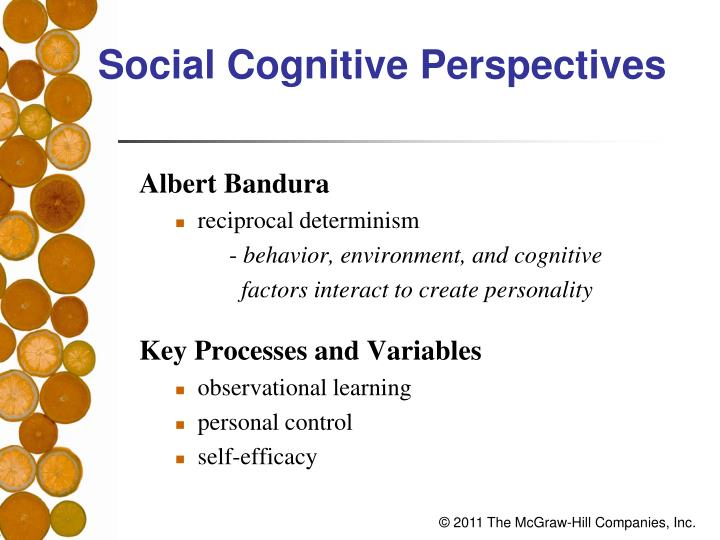 Social Cognitive Perspectives