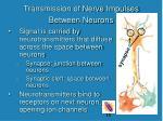transmission of nerve impulses between neurons