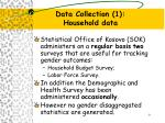 data collection 1 household data