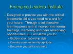 emerging leaders institute