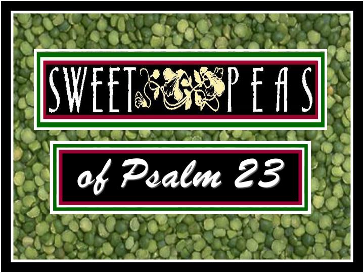 of psalm 23 n.