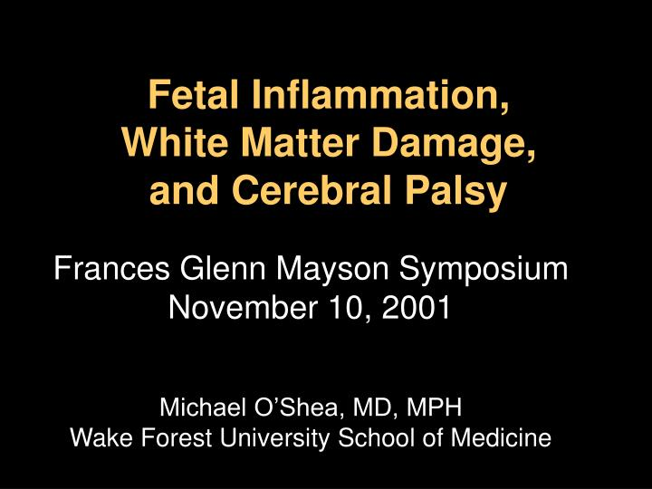 fetal inflammation white matter damage and cerebral palsy n.