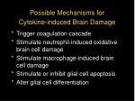 possible mechanisms for cytokine induced brain damage