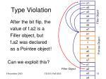 type violation