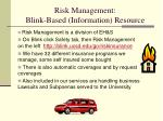risk management blink based information resource