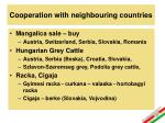cooperation with neighbouring countries