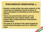 international relationship 2