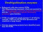 deubiquitination enzymes