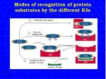 modes of recognition of protein substrates by the different e3s